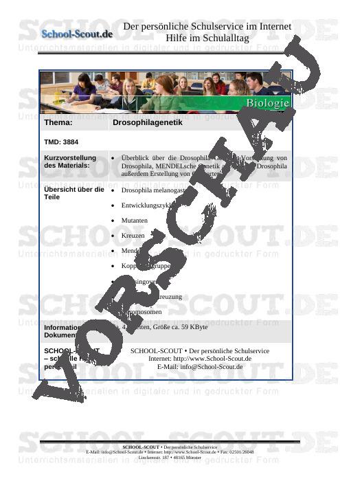 Drosophilagenetik - School-Scout Unterrichtsmaterial Biologie - Biologie