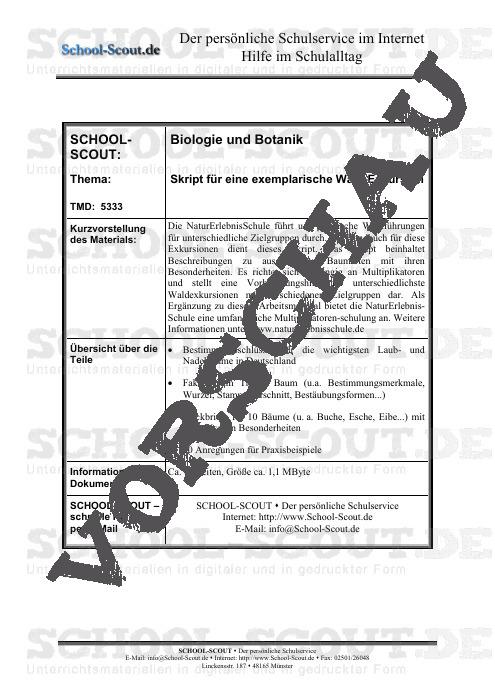 Skript für eine exemplarische Wald-Exkursion - School-Scout Unterrichtsmaterial Biologie - Biologie